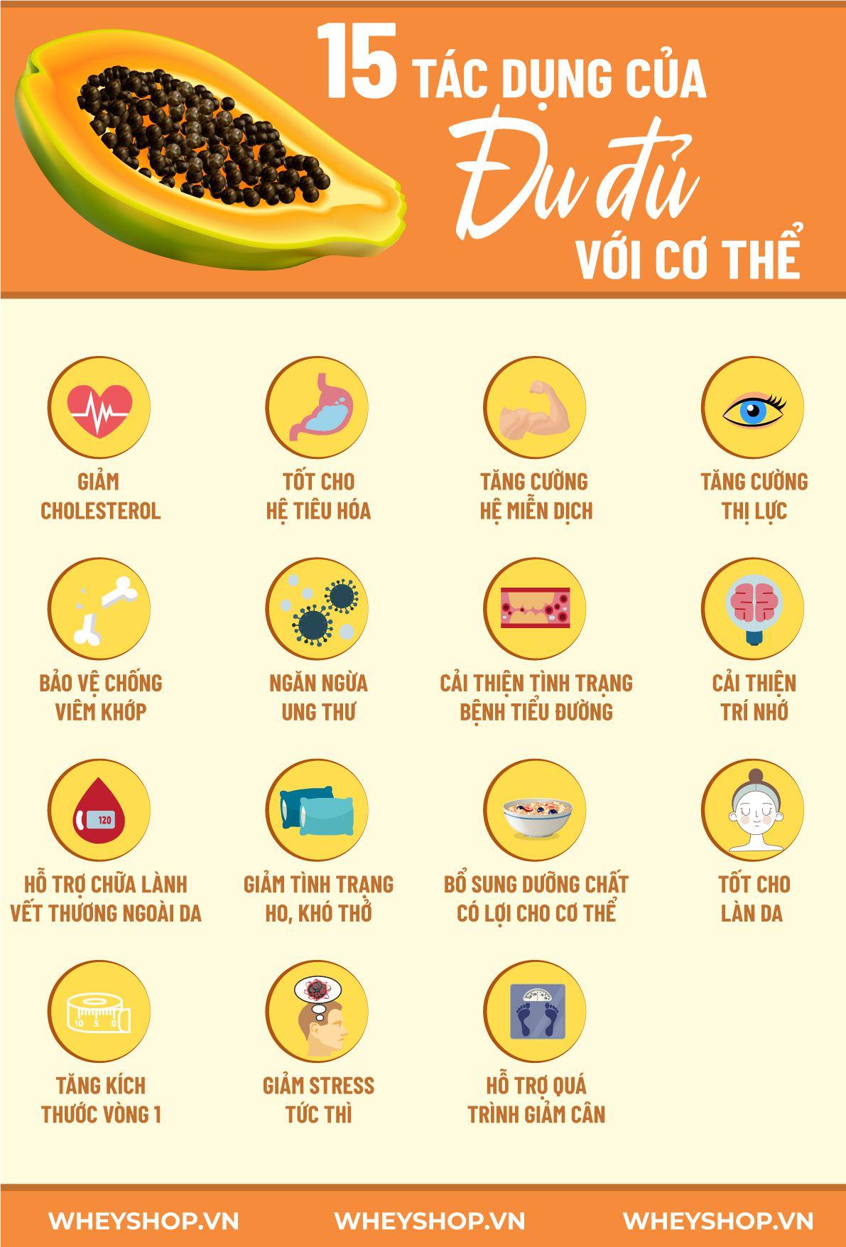 Đu đủ là một loại trái cây quen thuộc, tuy nhiên bạn đã hiểu rõ về lợi ích của đu đủ với sức khỏe chưa? Cùng WheyShop tìm hiểu 15 lợi ích...