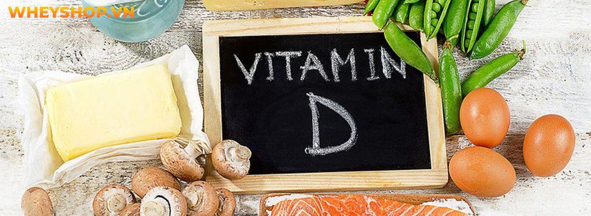 Bạn đã hiểu rõ hết về lợi ích của Vitamin D với sức khỏe chưa? Hãy cùng WheyShop tìm hiểu chi tiết qua bài viết sau đây nhé...