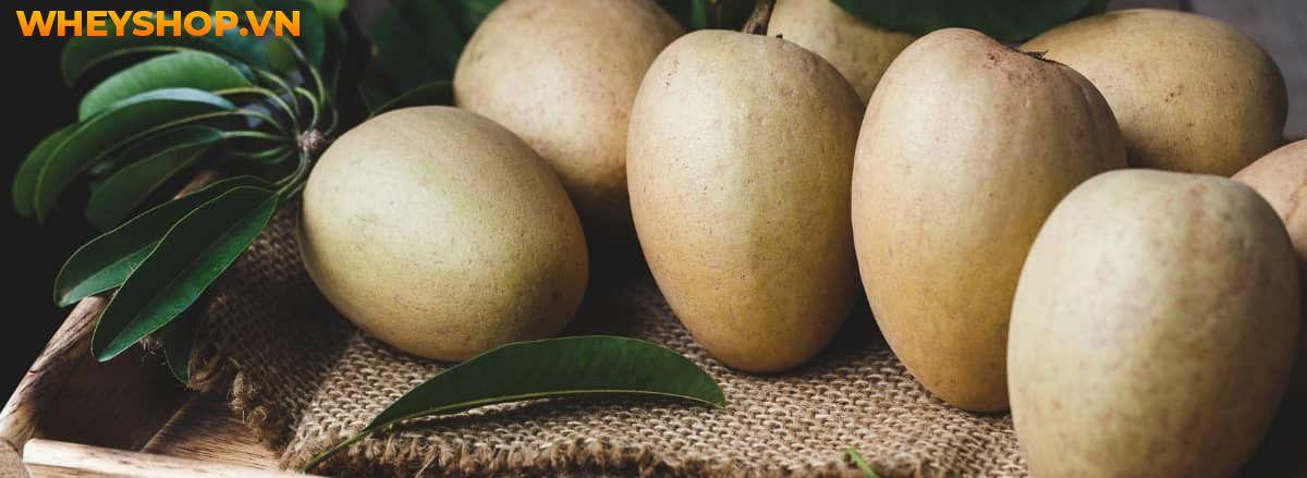 Nếu bạn đang phân vân trong việc sử dụng hoa quả giảm cân hiệu quả không thì hãy cùng WheyShop tìm hiểu ngay 20 loại hoa quả giảm cân qua...