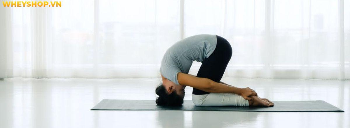 Hatha Yoga có lẽ là một thuật ngữ phổ biến đối với những người tập yoga lâu năm. Nhưng đối với người mới bắt đầu hoặc chưa biết gì về yoga thì đây vẫn còn là...