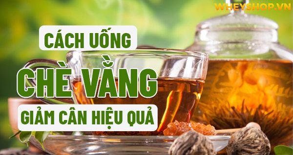 Chè vằng là loại đồ uống không còn quá xa lạ với người dân Việt Nam. Uống chè vằng giảm cân không? Bài viết này WheyShop sẽ cùng các bạn tìm hiểu chi tiết về...