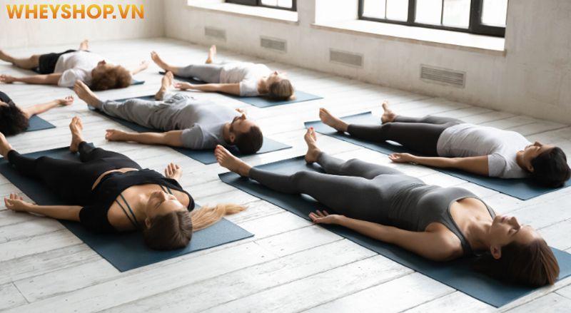 Yoga Nidra là loại hình Yoga lâu đời có nguồn gốc từ Ấn Độ, là loại hình có thể mang đến cho sức khỏe rất nhiều lợi ích tuyệt vời. Đặc biệt, loại hình yoga...