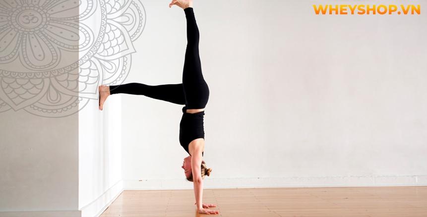 """Tư thế trồng chuối bằng tay Handstand là một trong những tư thế yoga """"đỉnh cao"""", nhưng không phải vì thế mà nó không thực hiện được. Nhưng nếu không cẩn thận..."""