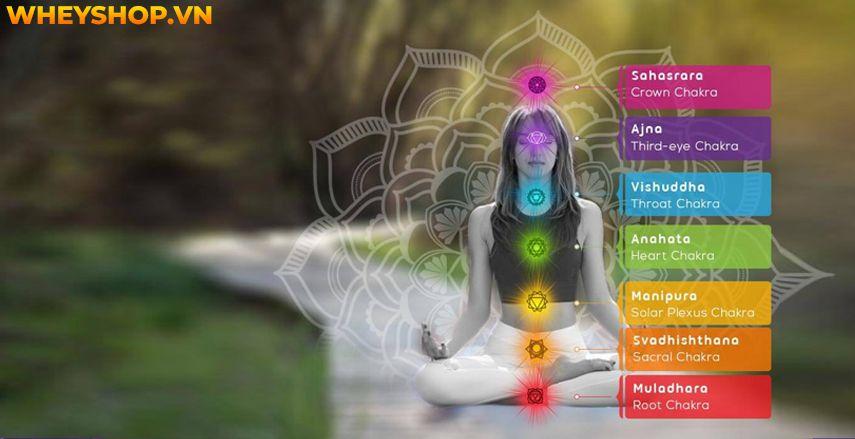 Trong quá trình thiền định, người tập nhận và chuyển hoá năng lượng từ vũ trụ thông qua các luân xa trong cơ thể. Vậy làm sao để khai mở Luân Xa đúng cách ?... Edit Snippet