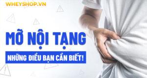 Mỡ nội tạng có thể làm tăng nguy cơ mắc nhiều bệnh nguy hiểm. Bạn đã từng nghe về mỡ nội tạng, thế nhưng lại không biết nó là gì? Bài viết dưới đây WheyShop...