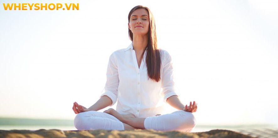 Ngồi thiền Yoga là một trong những phương pháp hữu hiệu giúp người tập giải tỏa căng thẳng, mệt mỏi, tìm được sự an yên trong suy nghĩ và tâm hồn. Vì thế mà...