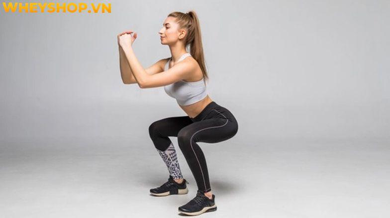 Các bài tập mông tròn đang trở nên ngày càng phổ biến đối với những người có nhu cầu tập luyện để sở hữu một thân hình quyến rũ. Bài viết dưới đây WheyShop...