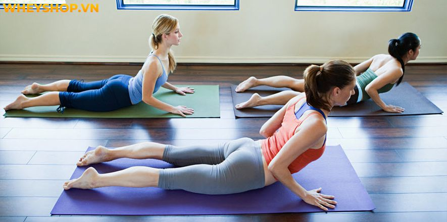 Tư thế rắn hổ mang (bhujangasana) là tư thế lý tưởng để tăng độ linh hoạt của cột sống, cũng như giảm đau lưng. Thế nhưng để tập tư thế này sao cho có thể...