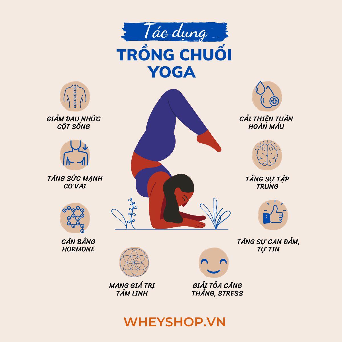 Thực hành tư thế trồng chuối Yoga giúp bạn khoe được những đường cong mềm mại trên cơ thể đồng thời nhận được nhiều lợi ích cho sức khỏe. Vậy thì tư thế...