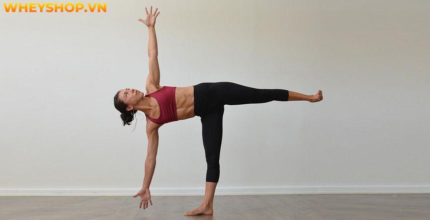 Power Yoga là một trong nhiều loại hình Yogađược rất ưa chuộng nhất hiện nay. Đây là loại hình Yogagiúp mang lại nhiều lợi ích với sức khỏe tim mạch, mang...