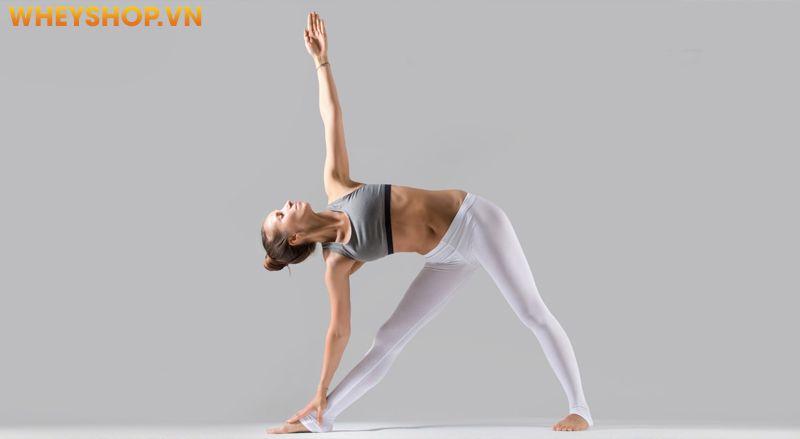 """Yoga Ấn Độ sẽ là """"món quà"""" dành cho các chị em phụ nữ đang tìm kiếm lại sự trẻ trung và duyên dáng của cơ thể để có thể tự tin dạo phố với bất kỳ các loại..."""