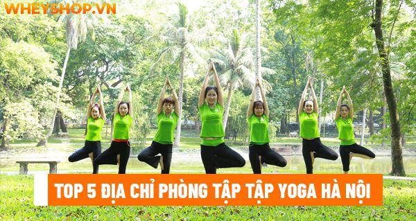 Top 5 địa chỉ phòng tập tập Yoga Hà Nội được yêu thích nhất