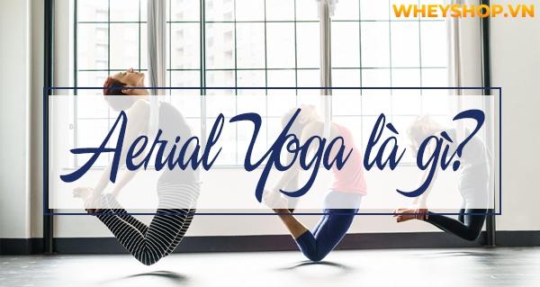 Aerial Yoga còn khá mới lạ so với người Việt Nam, nhưng đã rất phổ biến trên toàn cầu vì những lợi ích sức khỏe mà bộ môn này mang lại. Tuy nhiên, để quyết...