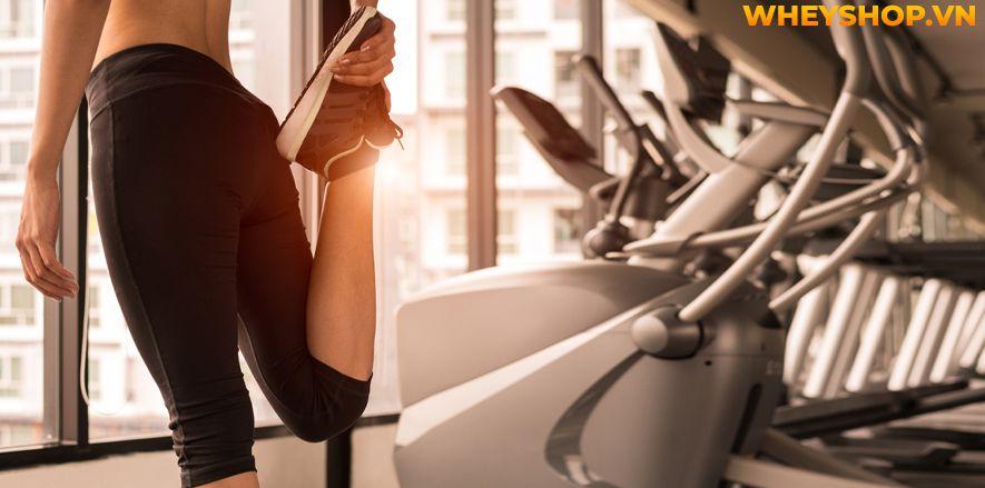 Tập bắp chân to tròn luôn là mơ ước của rất nhiều nam giới tập gym. Bắp chân to cân đối cùng cơ đùi, tạo dáng vẻ khỏe khoắn, nam tính. Tuy nhiên không phải...Thể dục nhịp điệu aerobic chắc hẳn không còn xa lạ gì đối với những người muốn giảm cân, giảm mỡ nhanh chóng ở Việt Nam. Tuy nhiên, bạn có biết thực chất tập...
