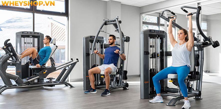 Nếu bạn đang có ý định đi tập gym nhưng chưa có kinh nghiệm tập gym và chưa biết phải bắt đầu từ đâu thì ài viết dưới đây của WheyShop sẽ bật mí cho các bạn...