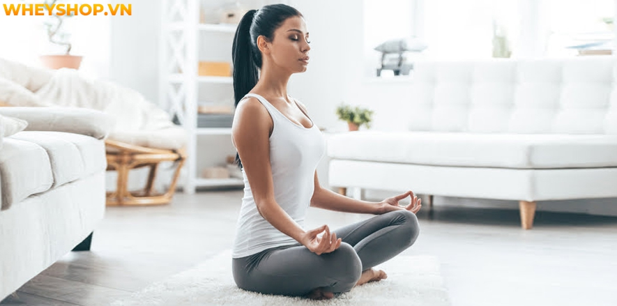 Từ khi ra đời cho đến nay, trường phái Yoga Therapy đã được yêu thích và trở thành một trong những trường phái yoga với nhiều tác dụng đối với sức khỏe con...