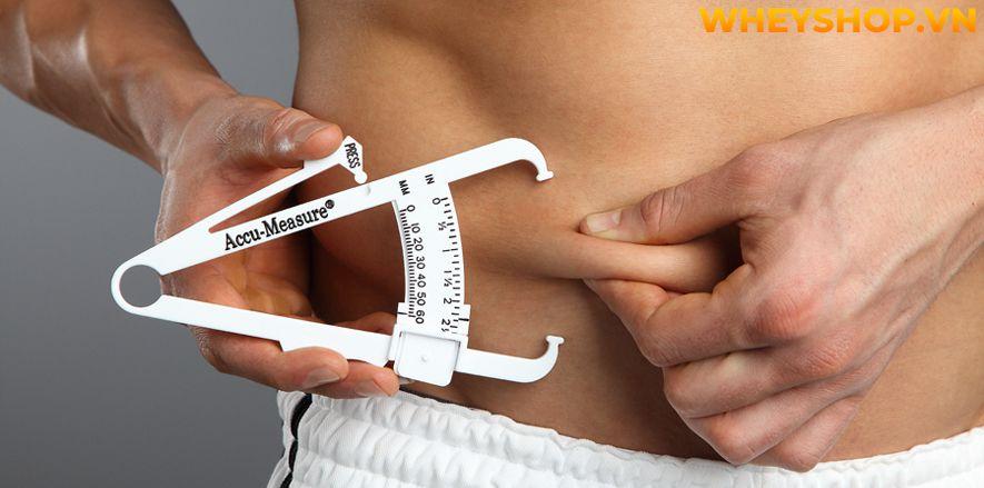 Tính tỉ lệ cơ thể chuẩn có thể nói lên được hầu hết những trạng thái của cơ thể bạn như béo, gầy hay cân đối, điều mà ngay cả khi cân nặng hay nhìn vào gương...