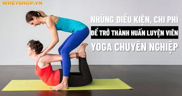 Nhung dieu kien chi phi de tro thanh huan luyen vien Yoga chuyen nghiep