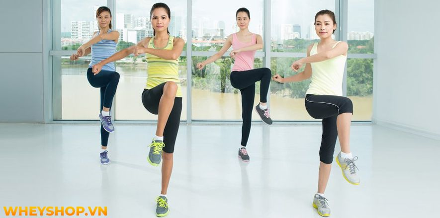 Thể dục nhịp điệu aerobic chắc hẳn không còn xa lạ gì đối với những người muốn giảm cân, giảm mỡ nhanh chóng ở Việt Nam. Tuy nhiên, bạn có biết thực chất tập...