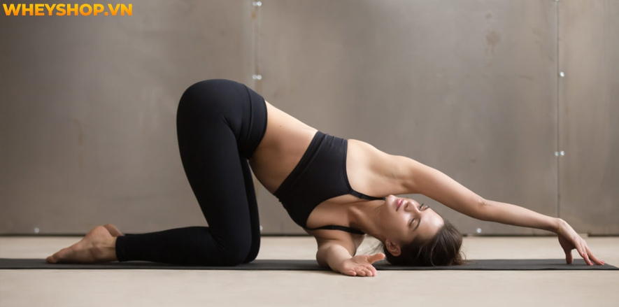 Yin Yoga , một loại hình yoga nhẹ nhàng, chậm rãi, giúp bạn tận hưởng sự tĩnh lặng và cảm nhận rõ ràng mọi thứ đang diễn ra bên trong cơ thể. Bạn đã nghe nói...