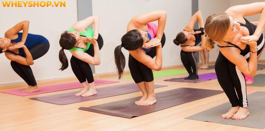 Nếu như bạn là người mới bắt đầu tập Yoga thì hẳn sẽ cảm thấy khá băn khoăn về phương pháp tập Yoga Flow là gì. Bài viết này, WheyShop sẽ cùng các bạn tìm...