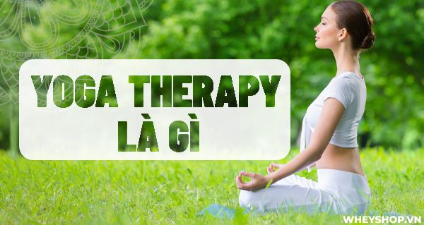 Yoga Therapy la gi Huong dan tap Yoga Therapy cho nguoi moi bat dau