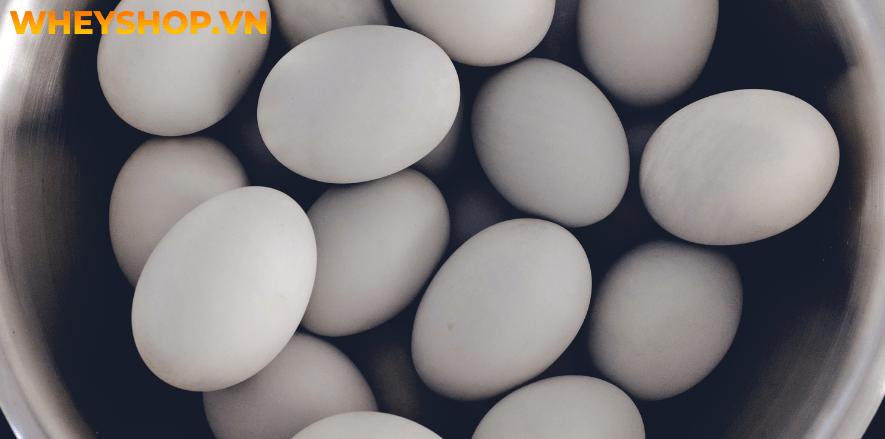 Nếu bạn chưa biết cách chọn trứng vịt lộn và luộc trứng vịt lộn ngon không nứt vỡ thì hãy cùng WheyShop tham khảo bài viết...