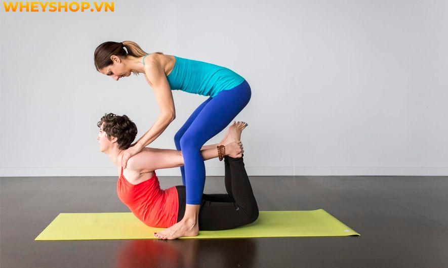 Nếu bạn đang băn khoăn tìm điều kiện trở thành huấn luyện viên Yoga chuyên nghiệp, chi phí học có đắt không thì hãy cùng WheyShop tham khảo bài viết...