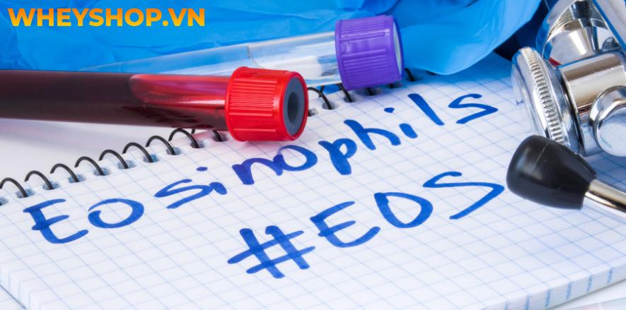 Nhiều người đi kiểm tra sức khỏe thấy kết quả xét nghiệm máu có chỉ số Eos cao vượt mức quy định, nhưng lại không biết chỉ số Eos là gì ? Bài viết dưới đây...