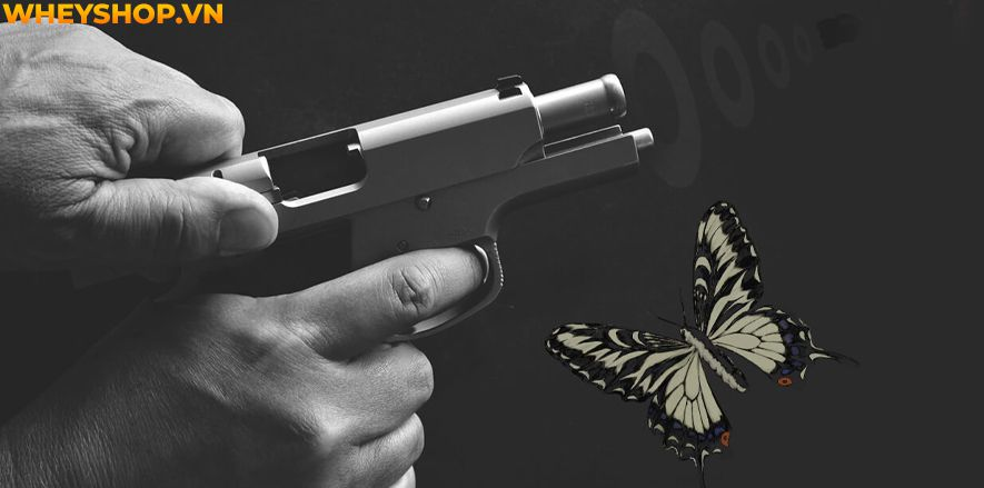 Hiệu ứng cánh bướm là tên gọi của việc một chi tiết có thể ảnh hưởng đến cả một sự việc lớn. Đây là một hiệu ứng tâm lý khá phổ biến trong cuộc sống, nhưng...