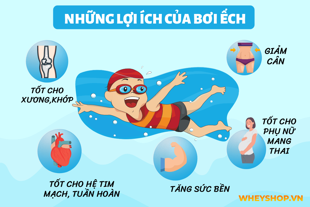 Lý do nhiều người chọn bơi ếch để bắt đầu với môn thể thao này là vì chúng ta có thể tiếp thu các kỹ thuật của nó một cách nhanh chóng và có nhiều lợi ích...