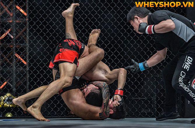 MMA là gì mà tại sao nhiều người lại biết đến và nhanh chóng trở nên phổ biến như vậy trên toàn thế giới? Hãy cùng WheyShop tìm hiểu tất cả những thông tin...