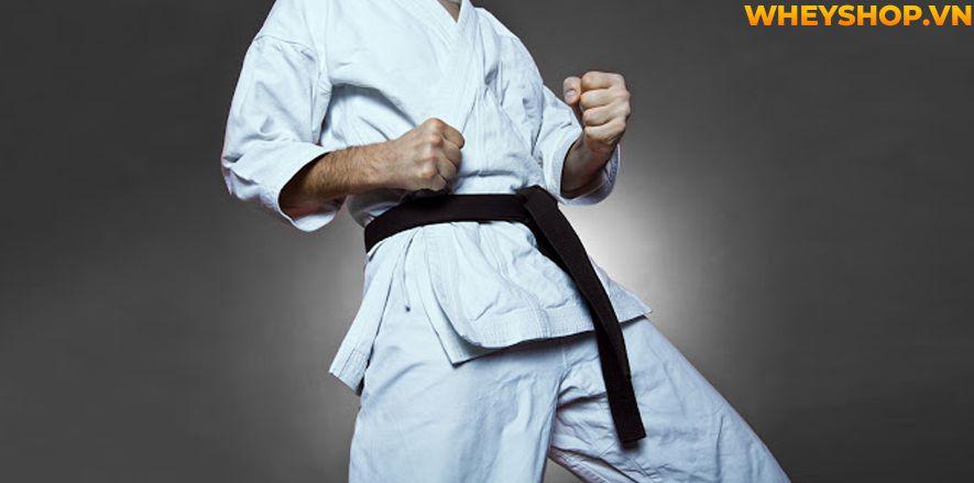 Taekwondo là gì? Taekwondo có mấy đai? Các động tác cơ bản trong Taekwondo