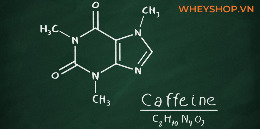 Say cafe và cách trị say cà phê như thế nào cho hiệu quả? Chủ đề này đã khiến rất nhiều người quan tâm bởi lẽ cà phê là một thức uống hấp dẫn, tuy nhiên...