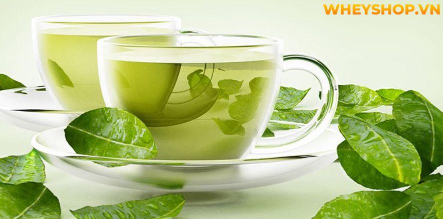 Nếu bạn đang băn khoăn không biết uống trà xanh như thế nào để giảm cân thì hãy cùng WheyShop tham khảo chi tiết bài viết ngay sau đây nhé...