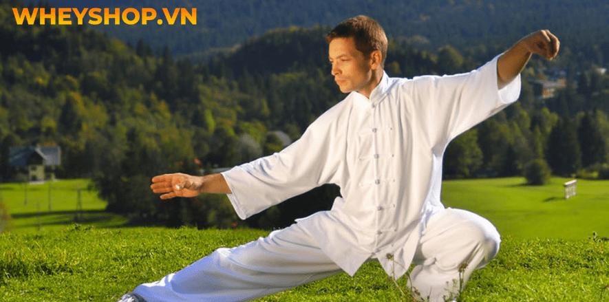 Việt Võ Đạo hay còn gọi là Vovinam, là do võ sư Nguyễn Lộc sáng tạo ra vào năm 1936. Đến nay, môn võ này đã phát triển ở nhiều nơi trên thế giới. Năm 2007...
