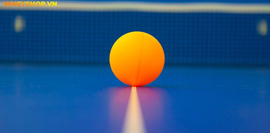 Nếu bạn đang băn khoăn chưa biết cần chuẩn bị dụng cụ bóng bàn thì hãy cùng WheyShop tham khảo chi tiết bài viết ngay sau đây...