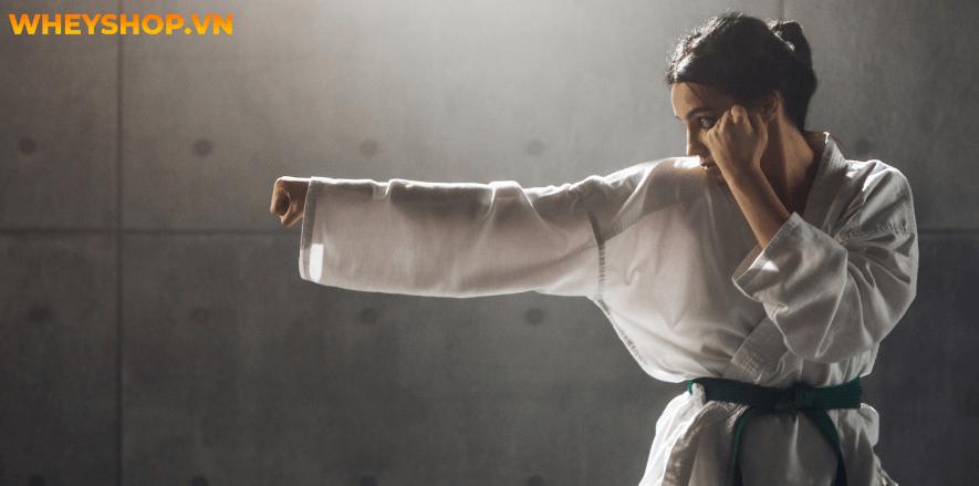 Nếu bạn đang băn khoăn chưa biết học Karate cơ bản như nào thì hãy cùng WheyShop tham khảo chi tiết bài viết này...