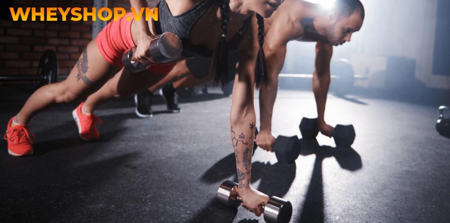 Các thiết bị dụng cụ tập gym thể dục khác nhau sẽ phù hợp cho các đối tượng nam nữ khác nhau, dựa vào yếu tố này, bạn hoàn toàn có thể lựa chọn thiết bị phù...