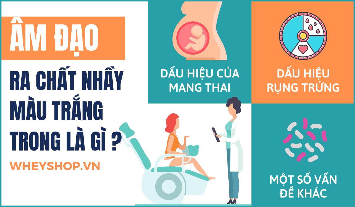 Nếu bạn đang lo lắng phân vân ra chất nhầy màu trắng trong có phải mang thai hay không thì hãy cùng WheyShop tham khảo giải đáp bài viết...
