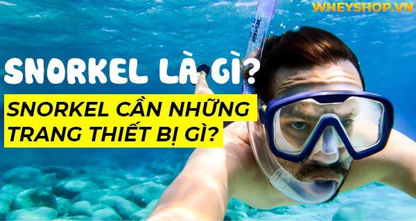 snorkel la gi snorkel can nhung trang thiet bi gi 8