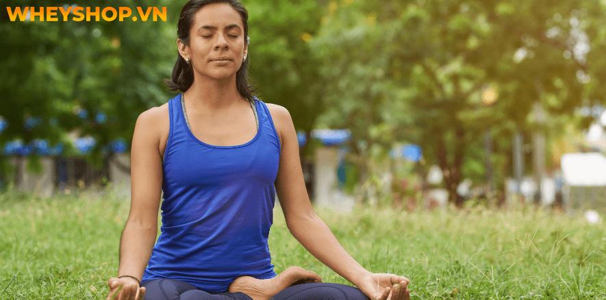 Tập Yoga mang lại vô số lợi ích cho sức khỏe. Vậy trên thực tế, tập Yoga có giảm cân không ? Xin mời các bạn hãy cùng WheyShop tham khảo bài viết dưới đây để...