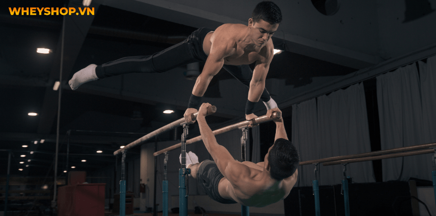 Thể dục dụng cụ không phải là một thuật ngữ mới và ít người biết đến ở Việt Nam, nhưng không phải ai cũng hiểu rõ về loại hình thi đấu thể thao này. Thể dục...