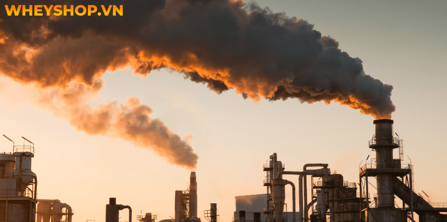 Vấn đề ô nhiễm môi trường trên thế giới ngày nay, bao gồm: đốt nhiên liệu từ các phương tiện có động cơ (ví dụ: ô tô và xe hạng nặng) tạo ra nhiệt và điện...