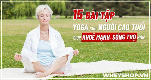 Nếu bạn đang tìm kiếm những bài tập Yoga cho người cao tuổi thì hãy cùng WheyShop tham khảo 15 bài tập hiệu quả nhất qua bài viết...
