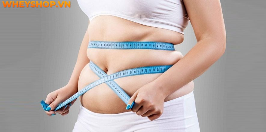 Nếu bạn đang tìm kiếm bài tập giảm cân trên giường thì hãy cùng WheyShop tham khảo ngay top 20 bài tập giảm cân trên giường hiệu quả nhất...