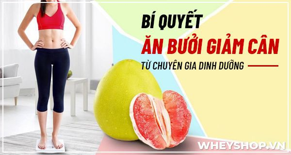 Bạn đã bao giờ nghe đến cách ăn bưởi giảm cân chưa? Và ăn bưởi giảm cân có hiệu quả không? Những thông tin được trình bày trong bài viết này, WheyShop sẽ...
