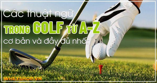 Bạn biết được bao nhiêu thuật ngữ trong golf? Theo thống kê thì có rất nhiều rất nhiều các thuật ngữ trong golf. Nếu không có kiến thức rộng cũng như sự...