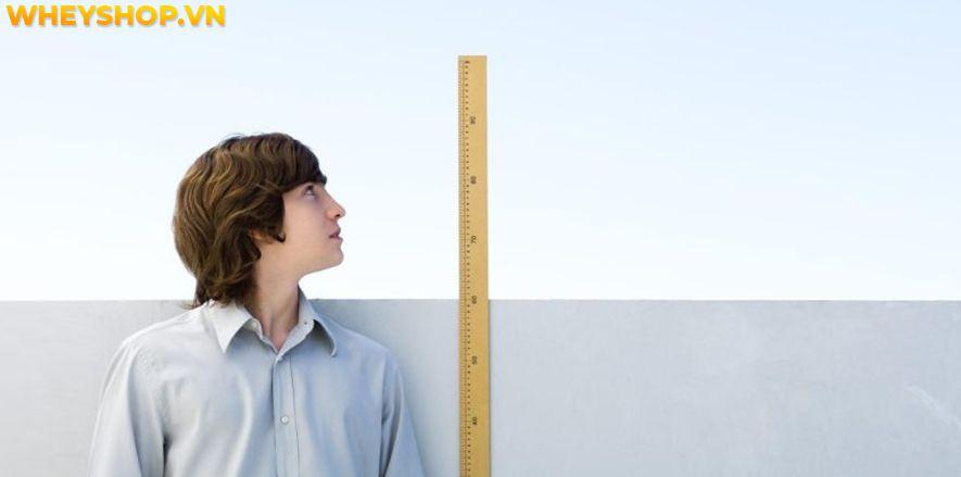 Nếu bạn đang băn khoăn tìm cách tăng chiều cao lên 1m80 thì hãy cùng WheyShop tham khảo chi tiết bài viết ngay sau đây nhé...