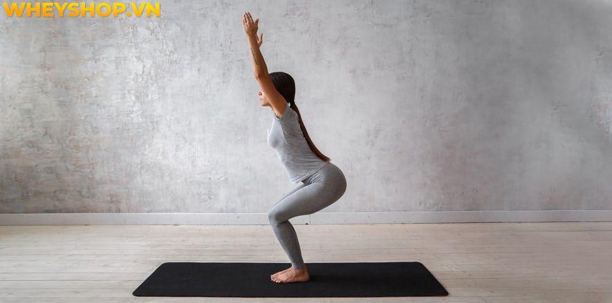 Bạn nghĩ rằng cơ thể của bạn không đủ linh hoạt để tập Yoga? Bạn có thể tham khảo chuyển sang tập Gentle Yoga , đây là một hình thức Yoga nhẹ nhàng nên rất...
